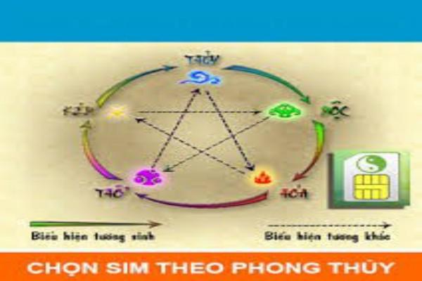 tim-sim-hop-tuoi-co-kho-hay-khong-3